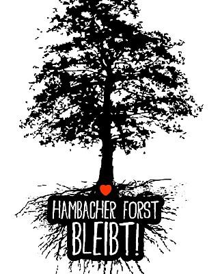 Hambi-Baum